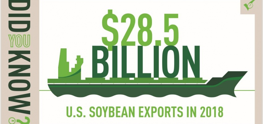 Global Importers Demand More Soybeans